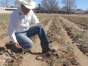 organic farming New Mexico Organic Farming Conference