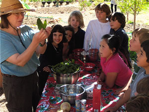 farm to school educational activities farm to table new mexico